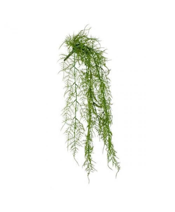 Euro Dekor 44307 Asparagus Sarmaşık 63 Cm.